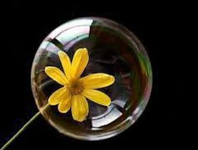 Burbuja de amor