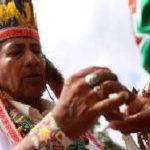 Drogas alucinogenas y ritos shamanicos