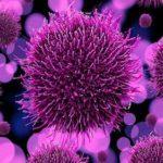 Los virus espirituales ¿que son y como actuan?