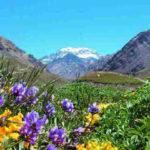 Acabo de escuchar la canalizacion de Mendoza, una maravilla!!