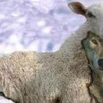 San Ezequiel y los falsos profetas