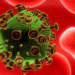 Evita la replicacion de virus espirituales con Ciudad Bajo Sitio Kin 8