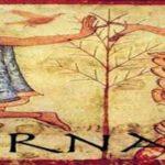 Saturnalia, fiestas en honor a Saturno en la Antigua Roma
