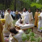 Pentecostes en la Iglesia Ortodoxa: El Paraclito renueva el mundo