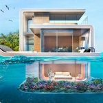 La casa viva y el Año Nuevo Maya