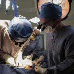 Una mirada espiritual sobre la donacion de organos ¿como afecta al karma?